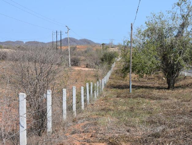 LAND OF 43 HECTARES IN THE HABAL ON THE ROAD